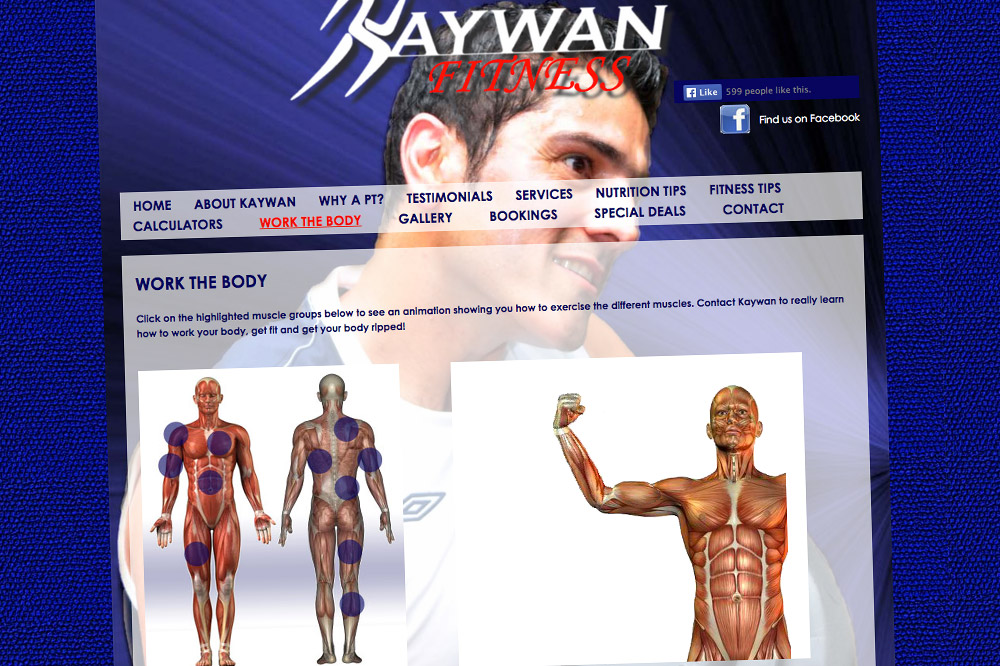 Kaywan Fitness Website exercise animations page 02